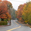 These leaves on Pleasant Street in Leominster have taken on the fall colors. SENTINEL & ENTERPRISE/JOHN LOVE