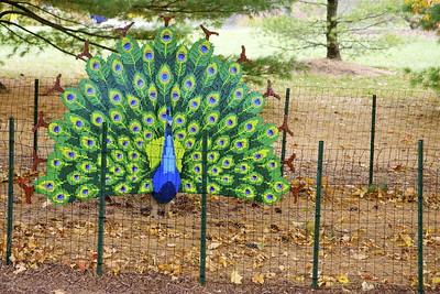 A peacock made of Lego blocks, The Morton Arboretum, Lisle, Ill., October 2015.