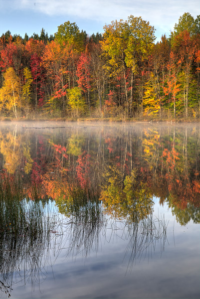 Reflections on Moccasin Lake