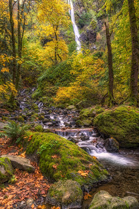 Starvation Creek Falls in Gorgeous Fall Colors. Columbia River Gorge Oregon.