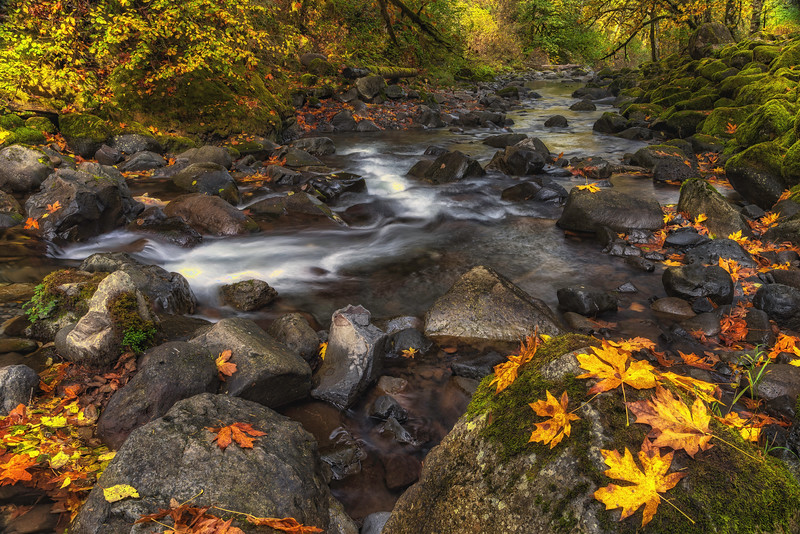 Fall on Tanner Creek Columbia River Gorge Oregon