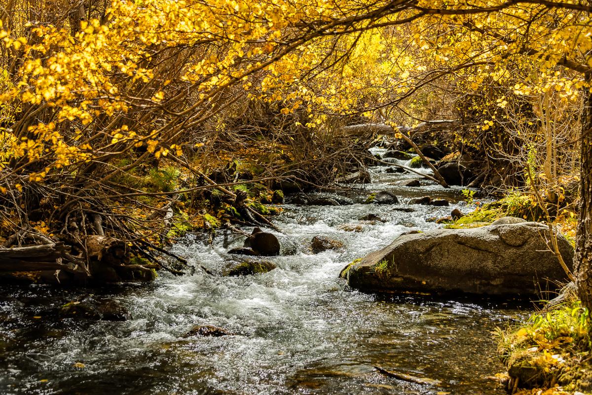 McGee Creek, Eastern Sierra