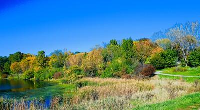 Fall in the City. Autumn foliage colors on a lake shore.