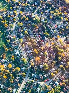 Fall colors in a suburban neighborhood Canada