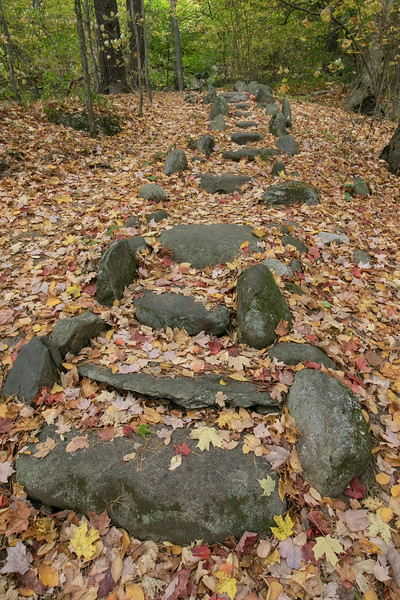 Leaves cover these rock stairs that led up to the waterfall at Barrett Park in Leominster on Tuesday morning. SENTINEL & ENTERPRISE/JOHN LOVE