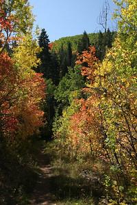 Troy's Trail