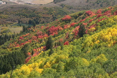 September 24  fall colors