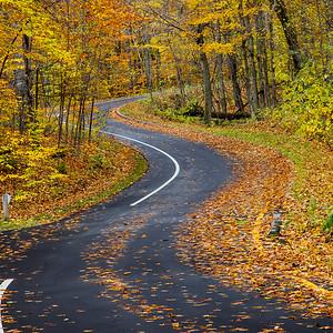 Fall on Pierce Stocking Scenic Drive