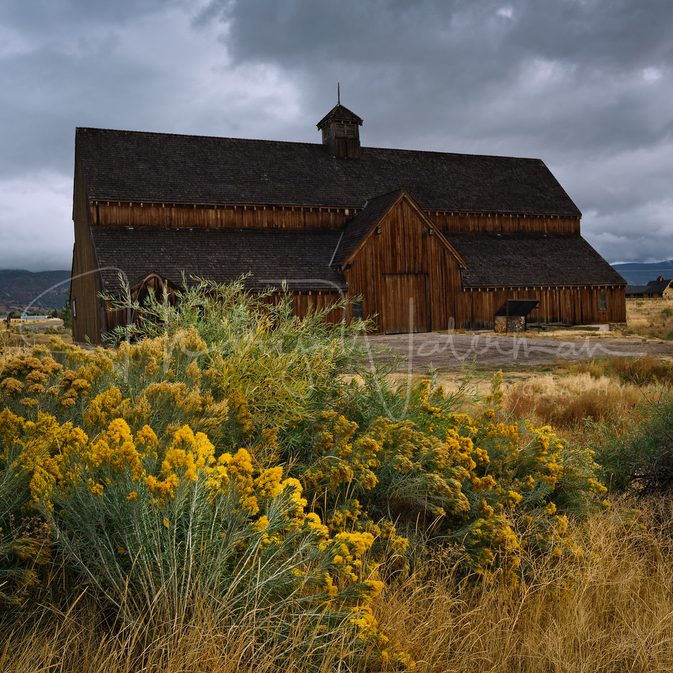 Tate Barn with Rabbit Brush