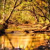 Pike Creek in Fall