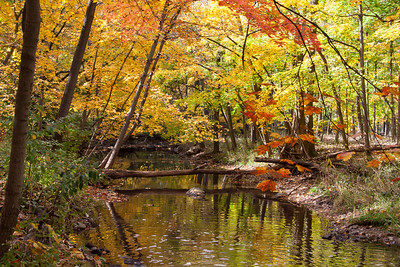 """fall creek"""