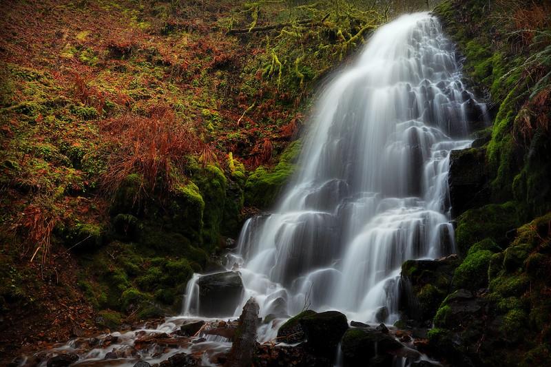 Fairy Falls I