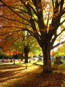 Dover Graveyard
