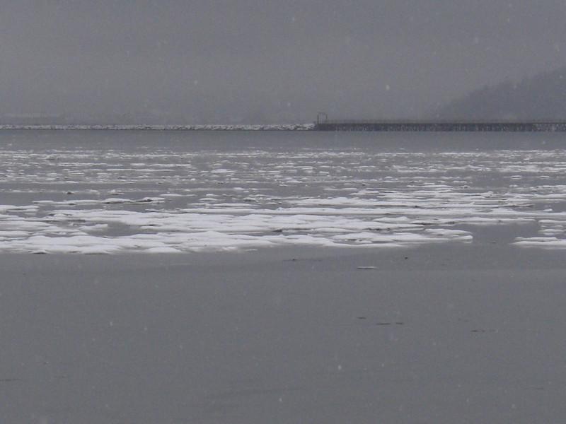 Fidalgo Bay...