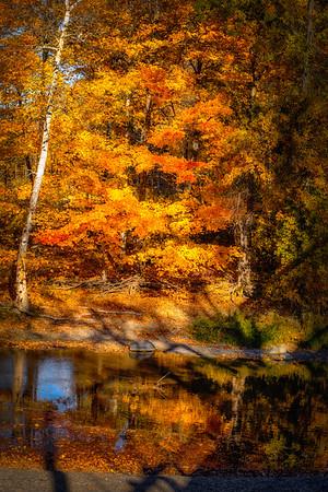 fall 2015 (199)-300