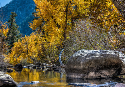 autumn-leaves-creek-4