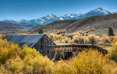 leaves-mountains-barn-1