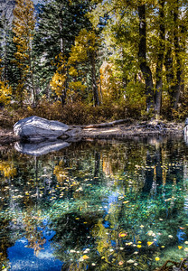 fall-pond-reflection-2-1