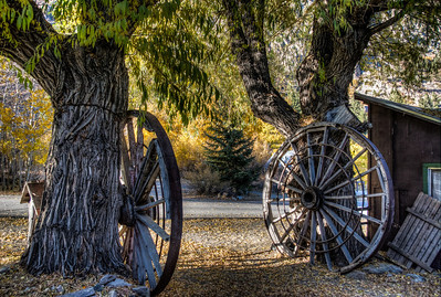 autumn-wagon-wheels-1