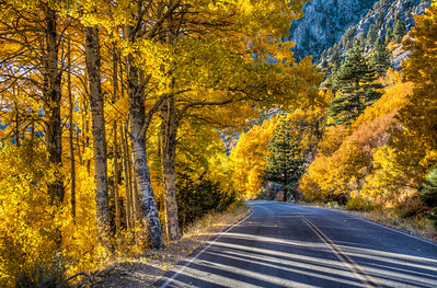 mountain-road-fall-color-13
