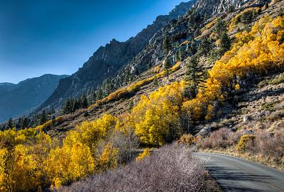 road-fall-color-1