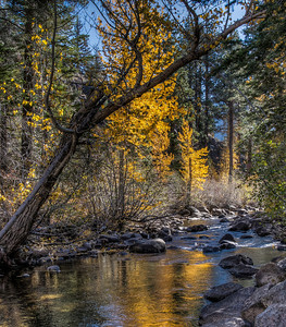 autumn-mountain-creek-2