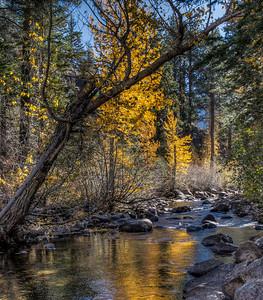autumn-mountain-creek-2