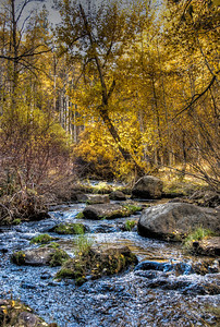 mountain-creek-autumn-8