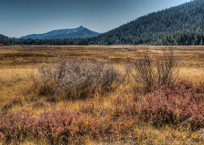 fall-mountain-meadow-3