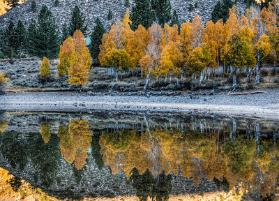 fall-leaves-reflection-17