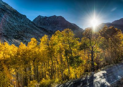 autumn-sun-trees-mountains-2