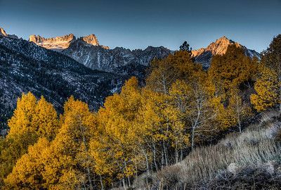 golden-trees-mountains-6