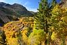 Classic Fall Day in the Eastern Sierra