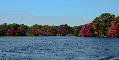 Massapequa Pond Less Blue 10-12-2013-1-6