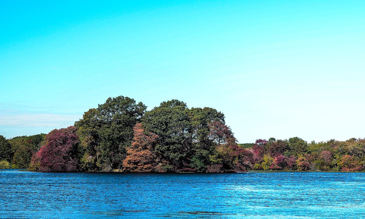 Massapequa Pond 10-12-2013-1