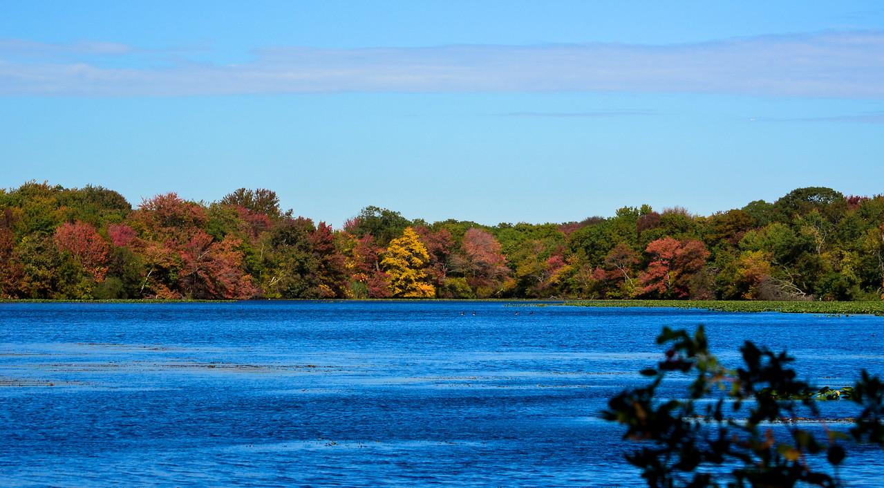 Massapequa Pond 10-12-2013-1-9
