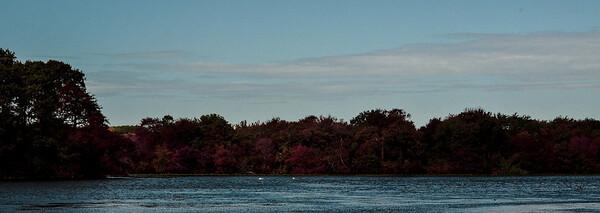 Massapequa Pond 10-12-2013-1-29