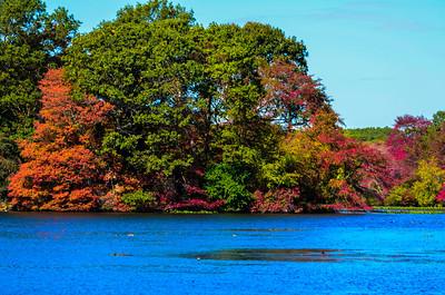 Massapequa Pond 10-12-2013-1-10