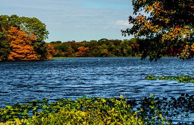 Massapequa Pond10-12-2013-1-6