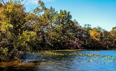 Massapequa Pond10-12-2013-1-2