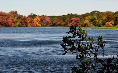 Massapequa Pond 10-12-2013-1-8