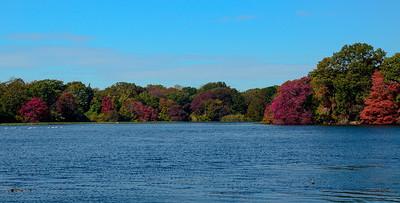 Massapequa Pond 10-12-2013-1-6