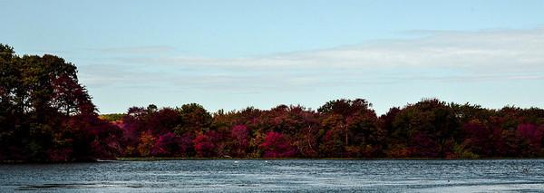 Massapequa Pond Less Blue 10-12-2013-1-24
