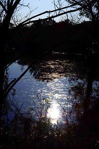 East Meadow Pond 10-25-11 Misexposure 1