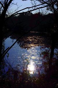 East Meadow Pond 10-25-11 Misexposure 2
