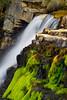 Middle Provo River Falls, Utah