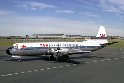 TAA-The Nation's Jetline (Trans Australia Airlines) Lockheed 188A Electra VH-TLA (msn 1061)(Jacques Guillem Collection). Image: 907642.