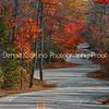 The Curvy Road