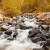 Galena Creek- Fall