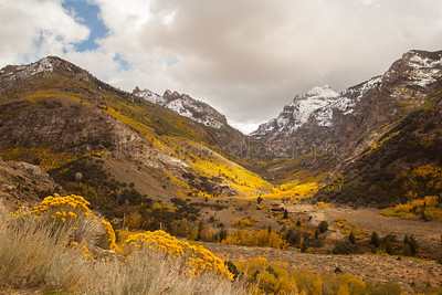 Lamoille Canyon~Ruby Mountains Wilderness~Nevada